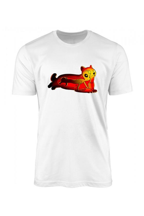 Koszulka Męska Prawdziwe Oblicze Kotów