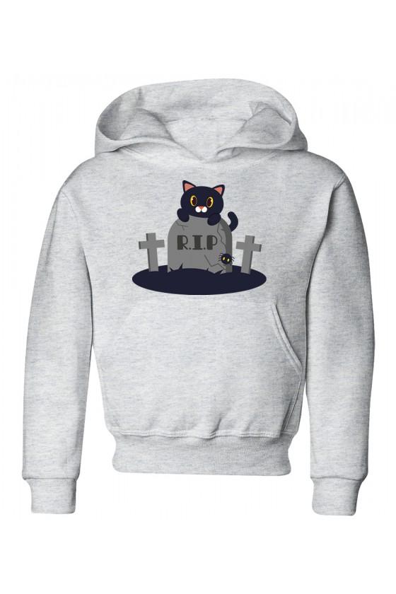 Bluza Dziecięca z Kapturem Koci Grabarz